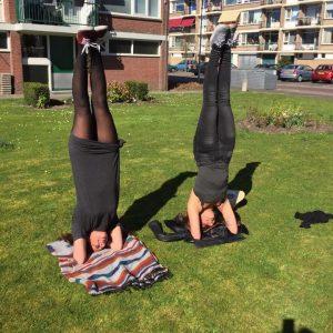yoga headstand Rohima