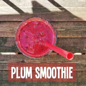 paleo smoothie love2workout