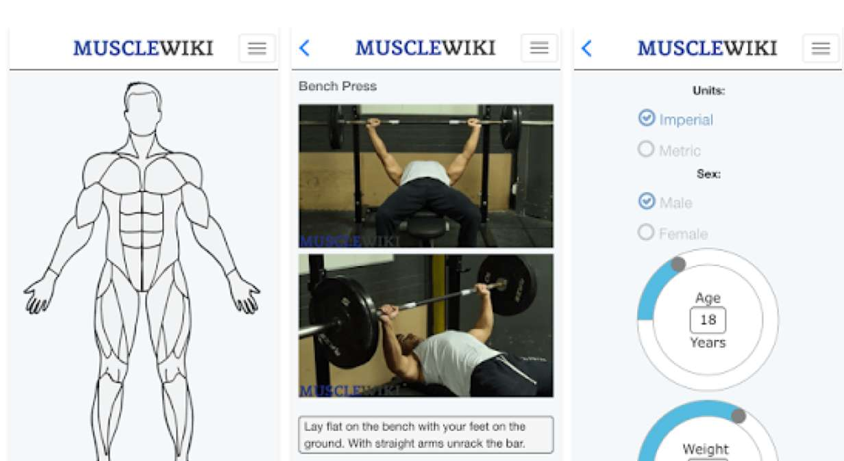MuscleWiki sport-apps